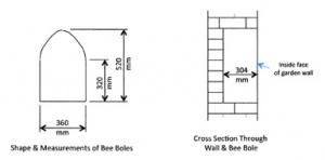 beebole-dimensions