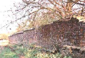 wall_ls